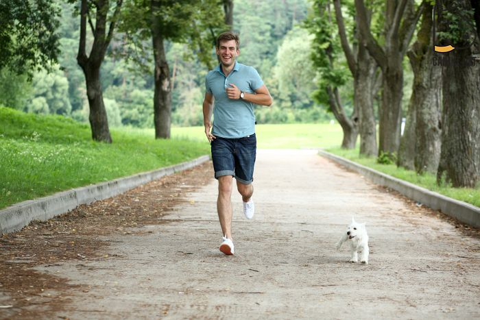 At What Age Can I Start Running With My Dog?