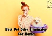 Best Pet Odor Eliminator For Home