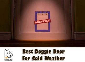 Best Doggie Door For Cold Weather