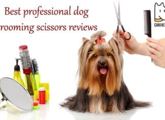 Best Professional Dog Grooming Scissors Reviews