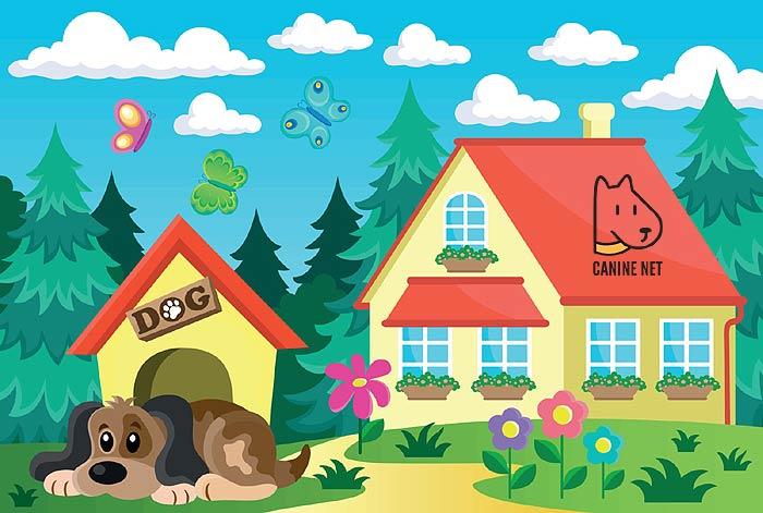 Dog House Vs Kennel