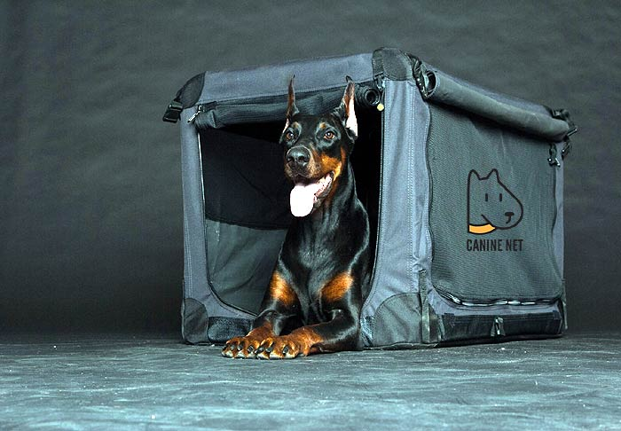 How Big Of An Outdoor Dog Kennel Do I Need?