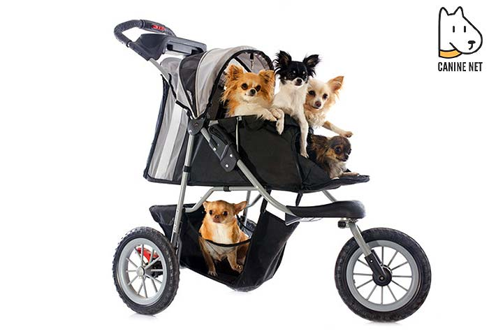 Why Do I Need A Dog Stroller?