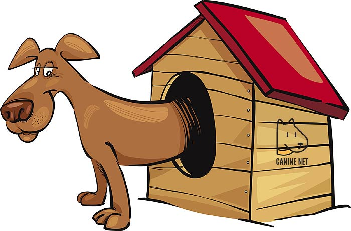 Why Owners Use An Outdoor Dog Kennel?